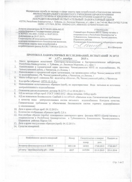 Протокол №10733 1 страница