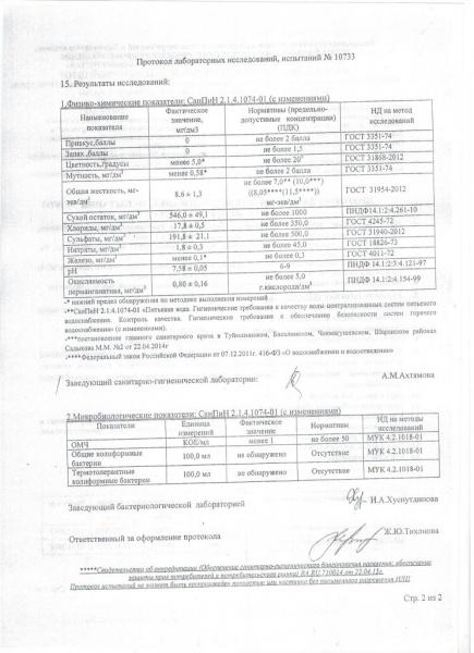 Протокол №10733 2 страница