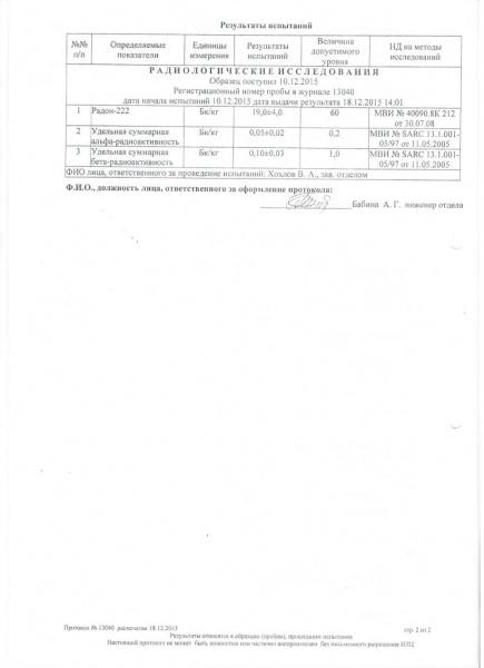 Протокол №13040 2 страница